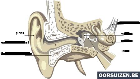 pulsatiele tinnitus